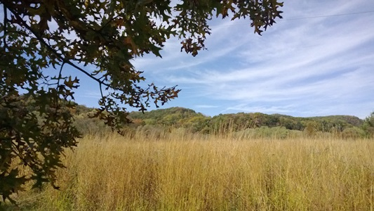 A fall view across the prairie with hills in the background