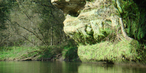 Rock Outcrop along Kickapoo River